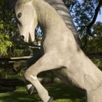 TodFan horseCU