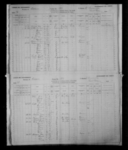 page from the 1881 census