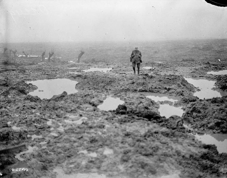 battle of passchendaele First world war battle of passchendaele on 31 july 1917, the british and french launched a massive offensive in the area around ypres in.