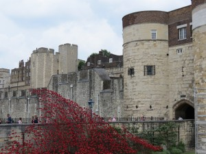 Poppy Arch, University of London, Queen Mary campus. Photo by author.