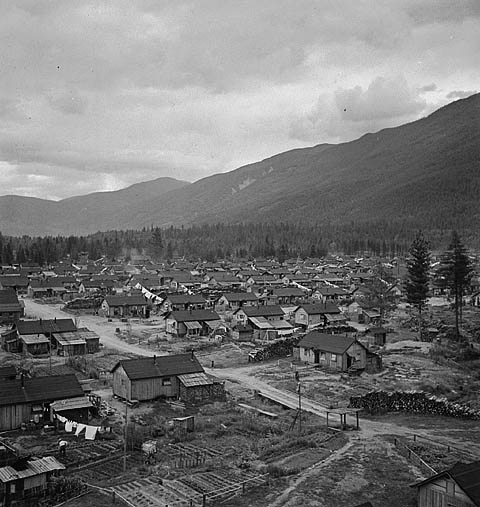 BC Camp for Japanese-Canadians, 1945. LAC.