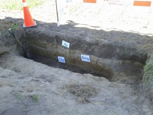 Trench dug by soil scientists on Field 1
