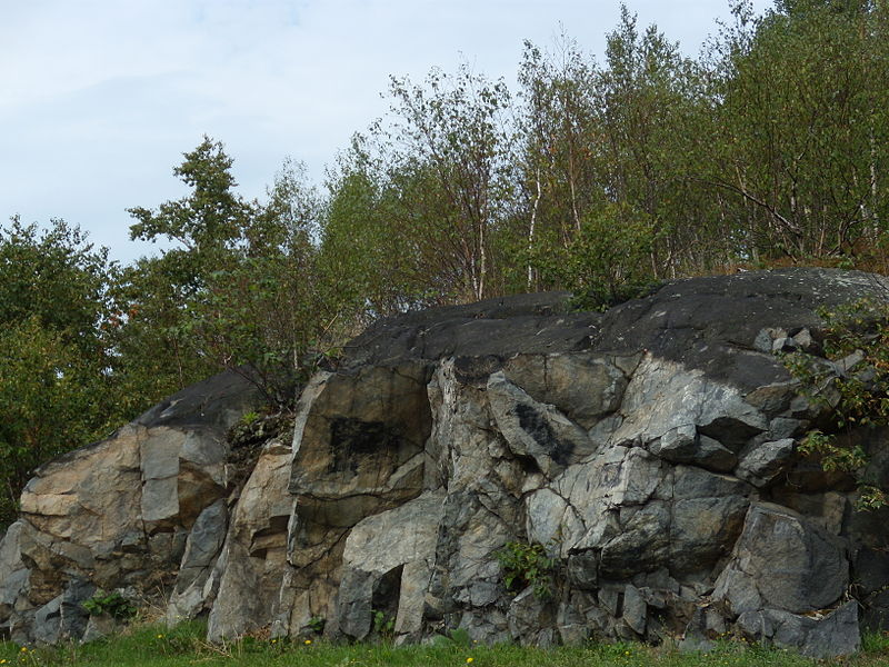 Our Bodies and Inescapable Ecologies: A Look at the Mining Community of Sudbury, Ontario