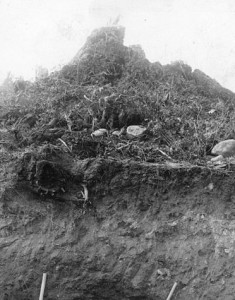 1908 photo of the c??sna??m site. First unearthed in 1884, controversy erupted over possible condominium development on the site in 2011. The Musqueam First Nation has now purchased the property. It is also designated as a National Historic Site.