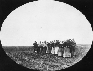 Doukhobor women are shown breaking the prairie sod by pulling a plough themselves, Thunder Hill Colony, Manitoba (Library and Archives Canada, Creative Commons)