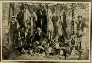 In_pine-tree_jungles;_a_hand-book_for_sportsmen_and_campers_in_the_great_Maine_woods_(1902)_(14738183436)