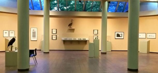 Exhibition being installed